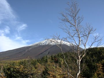 Fuji10205