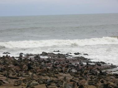 Sea0713