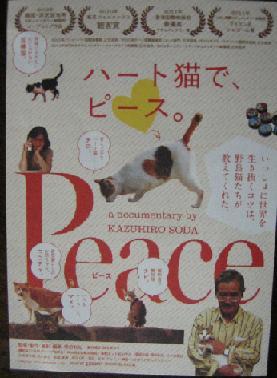 Peace110820