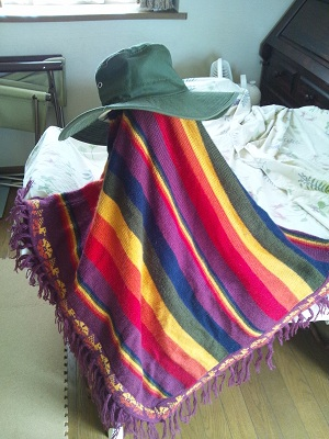 Poncho130627